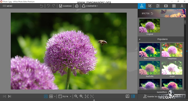InPixio Photo Clip Professional 9 imagenes