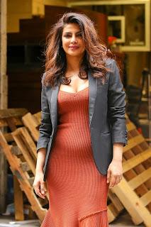 Priyanka (11).jpg