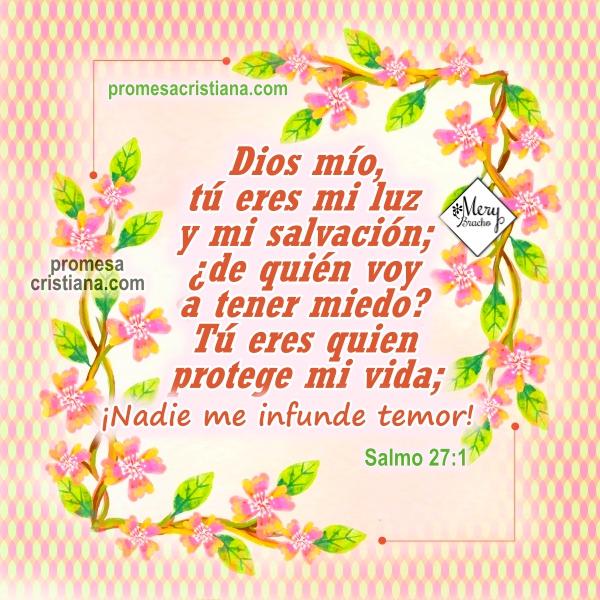 Promesa cristiana Dios me protege y me cuida. Salmo de protección corto de la Biblia. Promesas bíblicas para ti y para mí. Imagen cristiana por Mery Bracho.