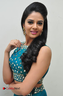 Sree Mukhi Pictures at Gentleman Audio Launch  0056