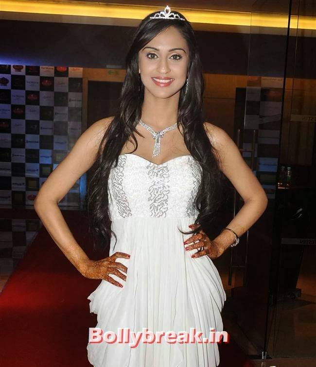 Krystle D'souza, Tv babes at Telly Calendar 2014 Launch