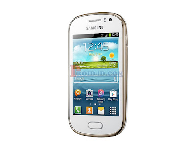Flashing Samsung Galaxy Fame GT-S6810