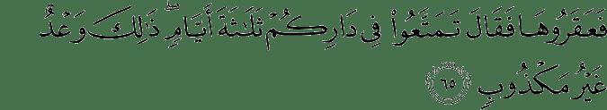 Surat Hud Ayat 65