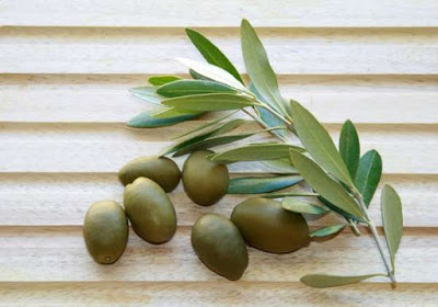 Discover The Benefits of Olive Leaves: Combats the Strokes, Hypertension And Alzheimer's