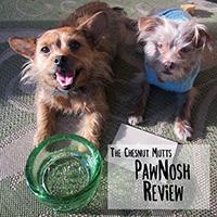 PawNosh pet bowls review