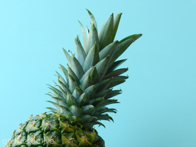 Pineapple Top- Tropical Fruit Photography: Grow Creative Art
