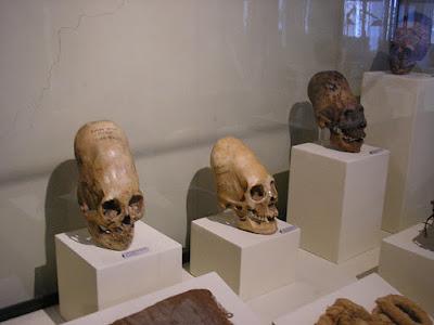 Museo Regional de Ica, que ver en Ica, Tours en Ica, Tours Ica