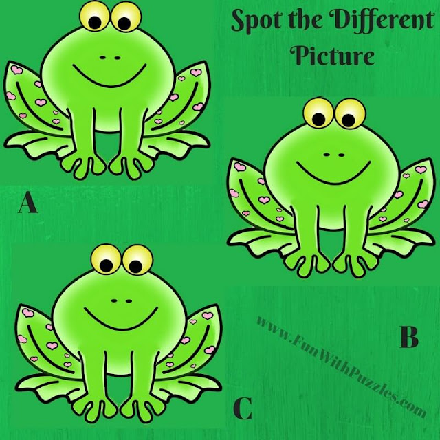 Spot The Different Picture Puzzles-Frog