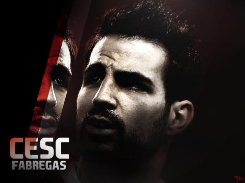 Cesc Fabregas Profile 2012