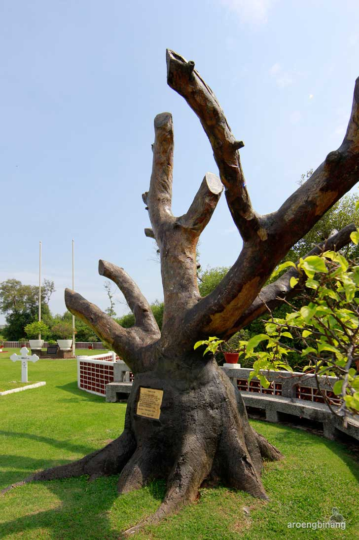 pohon surga ereveld ancol jakarta