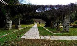 o-megaliteros-votanikos-kipos-tis-anatolikis-mesogiou-vriskete-stin-attiki