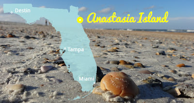 Anastasia State Park in Naturbelassene Strände Florida's, Florida USA