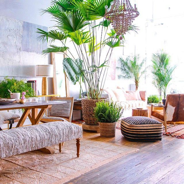 Konsep Rumah Tropis