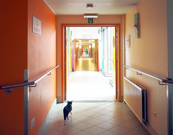 sint-amandsberg gent woonzorgcentrum