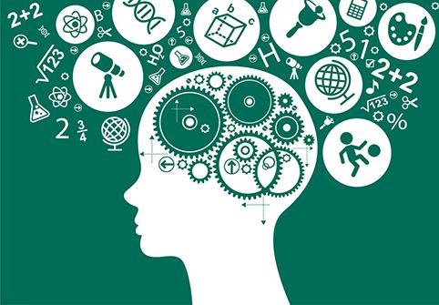 Pola Pikir Untuk Bekerja