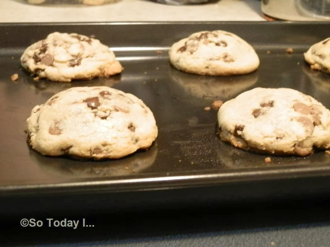 Nutty Squirrel Porno so today i: food porn: 'sweet, chocolate chip-overload