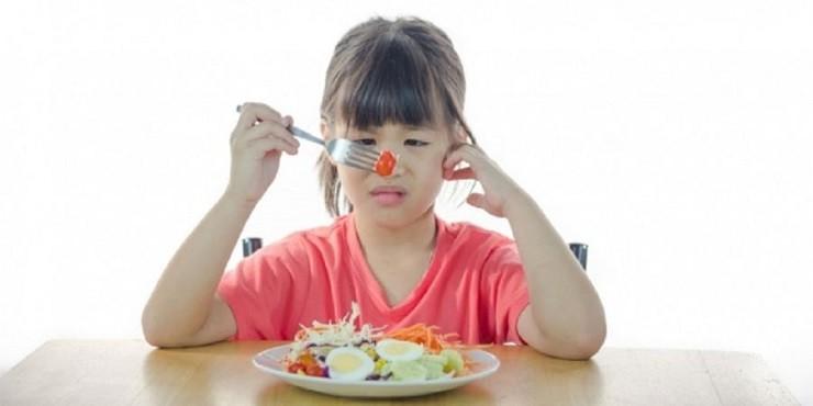 Solusi Mengatasi Anak Susah Makan