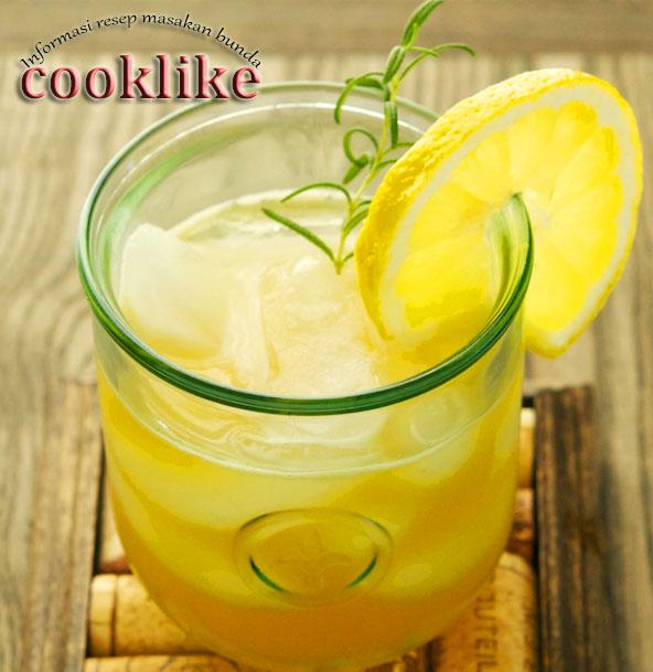 Resep Membuat Minuman. Citrus Squash