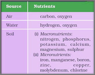 CBSE Class 9 - Science - Improvement in Food Resources - Study Notes (#cbsenotes)(#eduvictors)