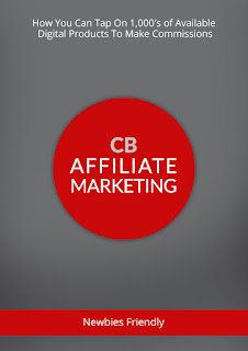 Affiliate programs and marketing.