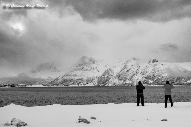 Fotografiando el Ullsfjorden - Tromso por El Guisante Verde Project
