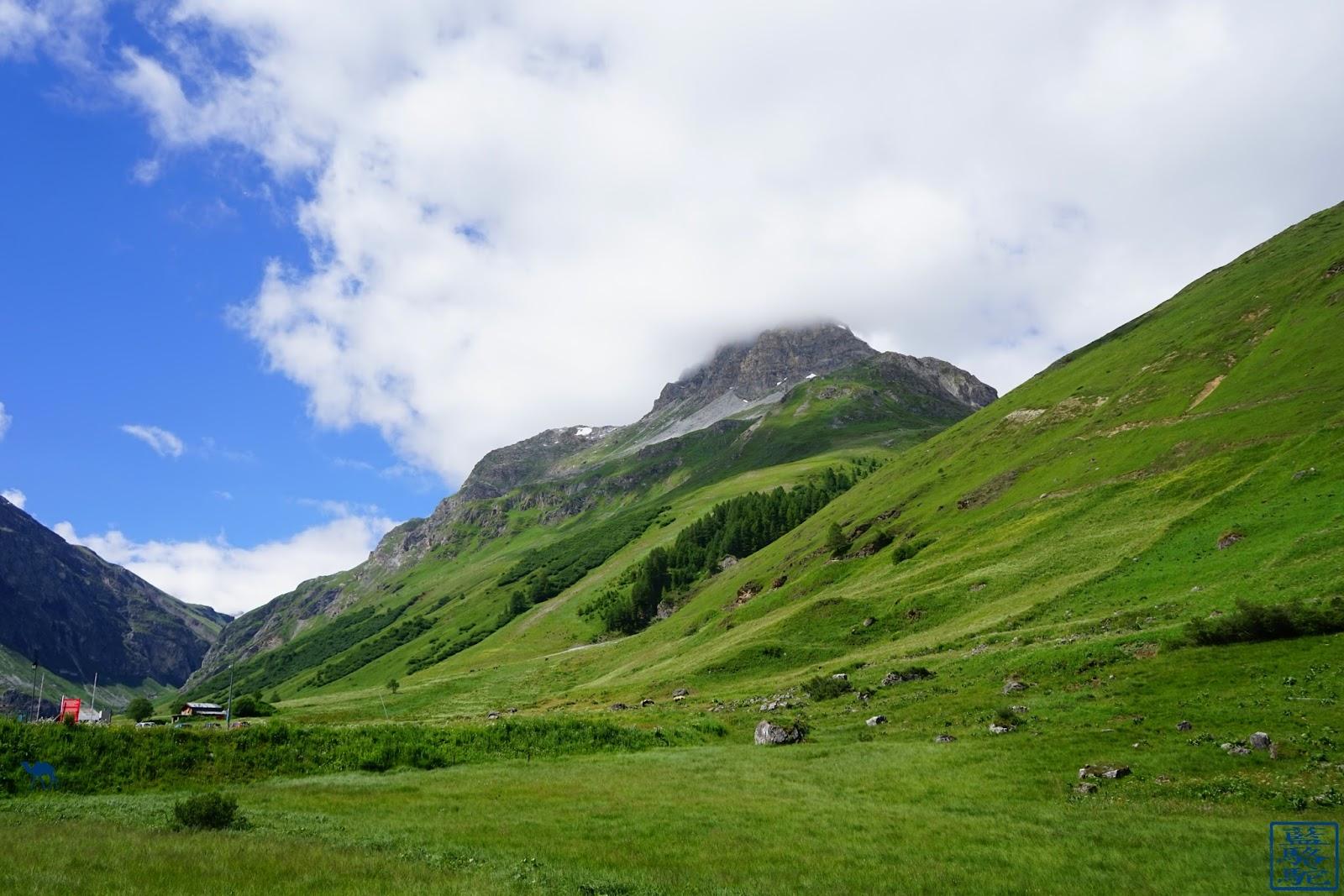 Le Chameau Bleu - Val d'Isère en été - Séjour en Savoie France