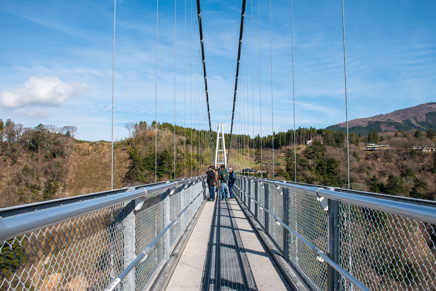 Rods and metal of suspension bridge in japan