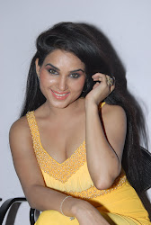 Bollywood, Tollywood, built, exquisite, hot sexy actress sizzling, spicy, masala, curvy, pic collection, image gallery
