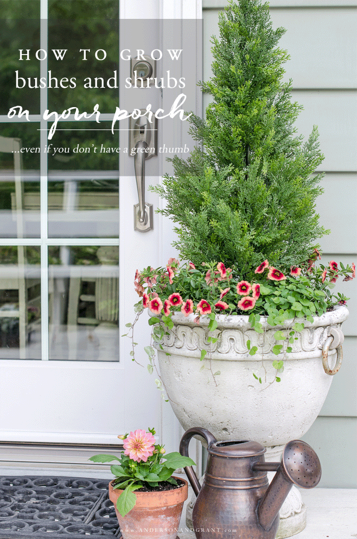 Faux shrubs and bushes are a great alternative to the real thing when planted in pots and containers for your porch.  Learn where to find these plants and how to make them look as real as possible to easily enhance your home's curb appeal.  #DIY #summerporch #frontporch #andersonandgrant