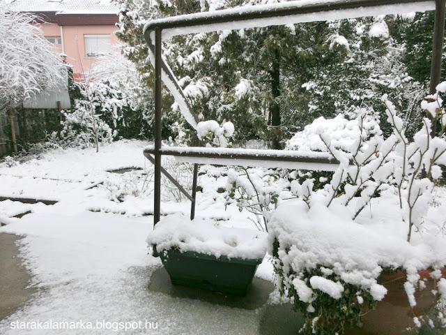 будапешт зима, будапешт отзывы, хюгге, ваби саби, рустик, о жизни в венгрии
