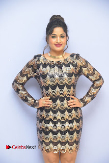 Actress Madhavi Latha Pictures in Short Dress at On Mona Birthday Premiere 0028
