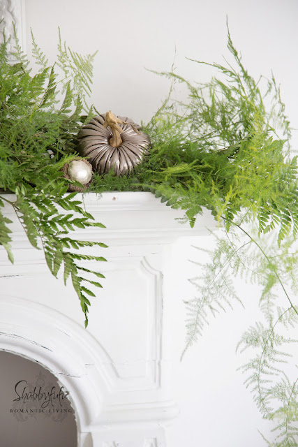 decorating with ferns