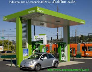 Cannabis-भांग का Industrial उपयोग
