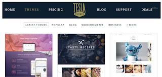 TeslaThemes - plantillas para Wordpress