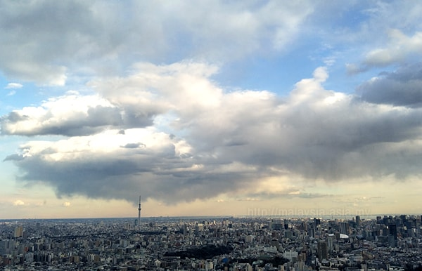 Aerial View Tokyo