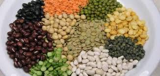 البروتين النباتي وفوائده العظيمة
