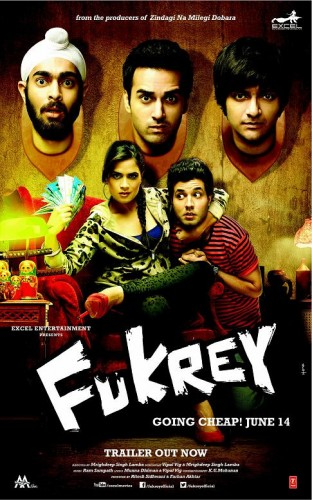 Fukrey 2013 DVDRip 700mb Hindi Movie Download