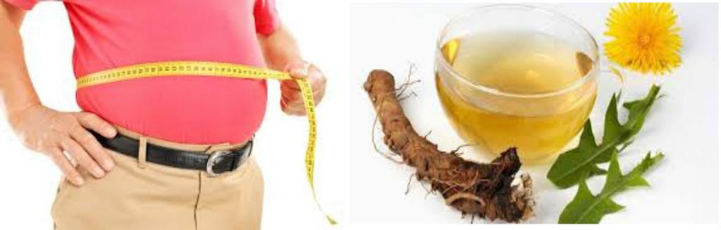 Obat Herbal Alami Untuk Pelangsing Perut