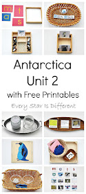 Montessori-inspired Antarctica learning activities and free printables for kids.