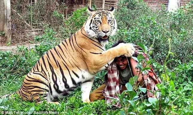 شاهد بالصور اغرب الصور للحيوانات