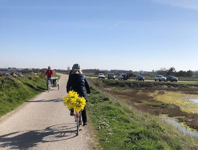 French Village Diaries day out on Ile de Ré by bike