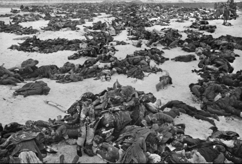 Stalingrad 1942 Vintage Everyday
