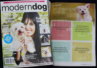The Returns 2 ~ Showstoppers quote in Modern Dog magazine
