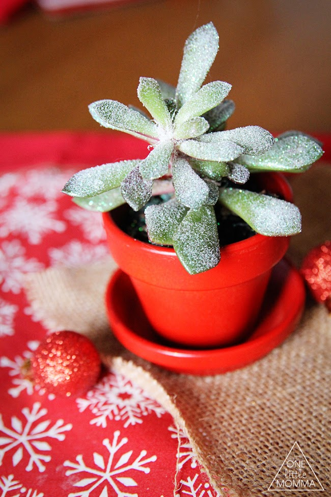 Add Glitter to Your Succulents for the Holidays with this easy tutorial + lots of ideas for using them! #spon #glitteratmichaels