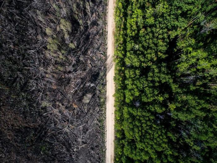 36 Unbelievable Pictures That Are Not Photoshopped - The Road That Stopped The Fire