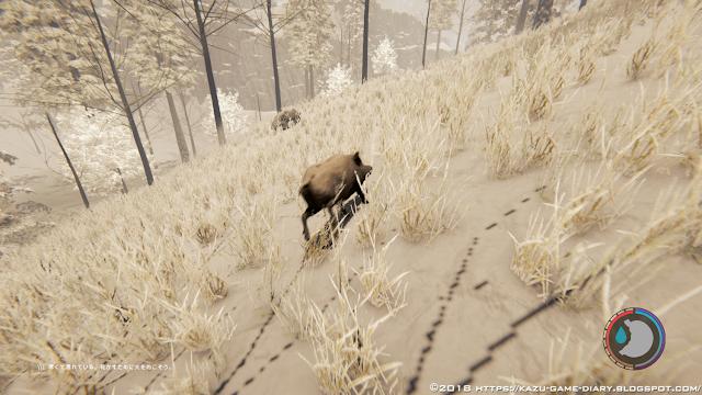 【The Forest】イノシシの出現場所|Kazuのゲーム日記