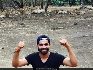 jadeja selfie with lions