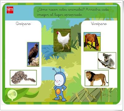 http://www.primaria.librosvivos.net/archivosCMS/3/3/16/usuarios/103294/9/1ep_Cmcp_ud5_a1_ca_Aprendo/actividad.swf