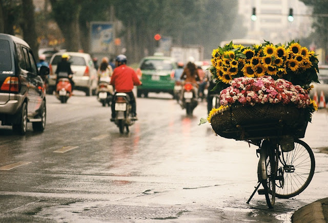 Looking for the hidden corner of the most beautiful season in Vietnam
