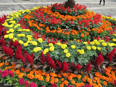 marigolds, Tiananmen Square, Beijing, China